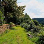 huisje sfeervol Frankrijk Limousin