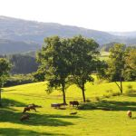 Arc-en-France holiday cottages gites Limousin Sussac